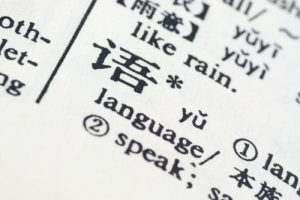 language written in chinese in a chinese-english translation dictionary..