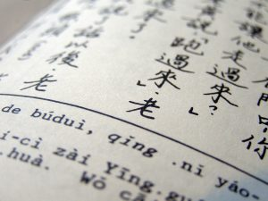 mandarin chinese characters printed on textbook page.